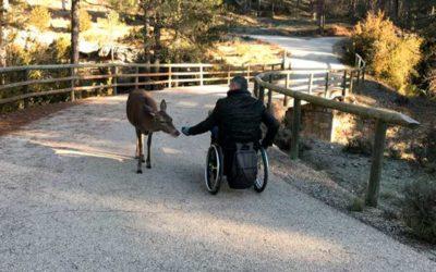 Castilla-La Mancha accesible. Rutas inclusivas a las cinco provincias.