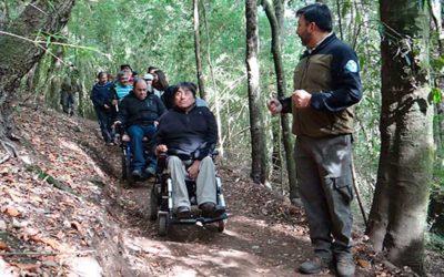 CONAF habilita sendero inclusivo 100% natural en el Cerro Ñielol